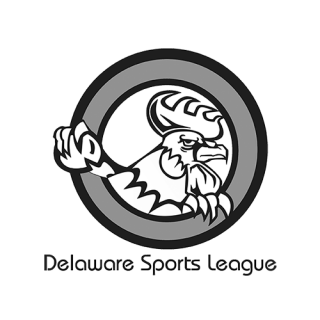 DELAWARE SPORTS LEAGUE